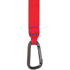 Sea to Summit Carabiner Tie Down 4,0m Pair blue/red